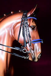 Dressage bridle with blue padding by Afuze