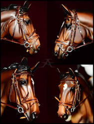 Brown bridle by Afuze