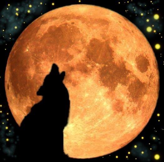 Moon Speak by Wildlebendes