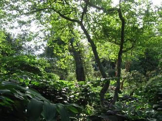 Finnerty Gardens