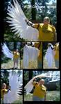 WIP - Realistic Wings