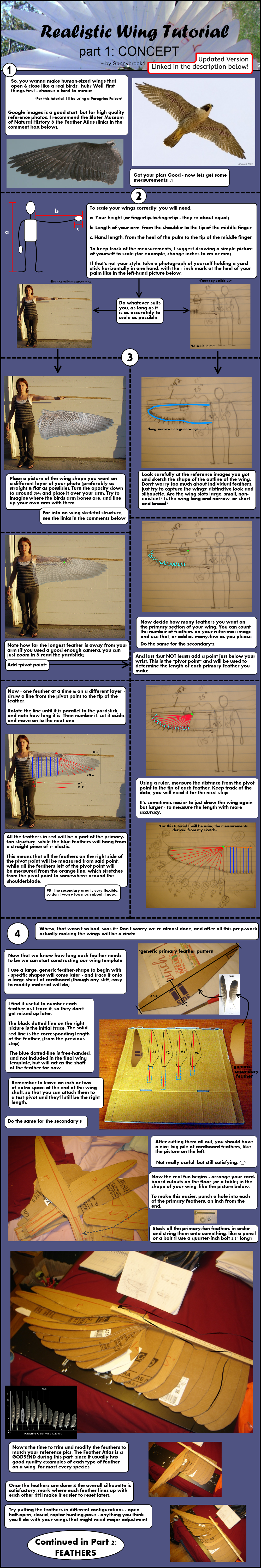 Realistic Wing Tutorial P1 By Sunnybrook1 On Deviantart Wiring Diagram