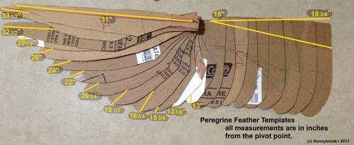 Peregrine Feather Template Lengths