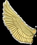 Mockingjay wing reference 2 by Sunnybrook1