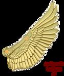 Mockingjay wing reference backwards feathers by Sunnybrook1