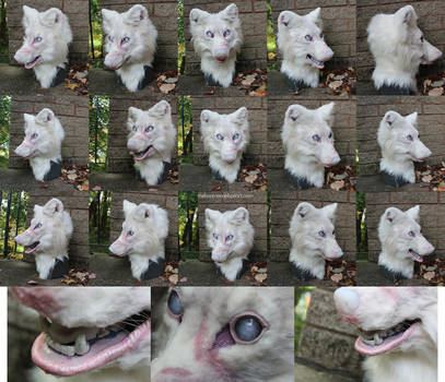 Ghost White Wolf fursuit head