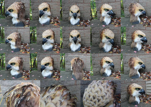 Crested Hawk Eagle fursuit head
