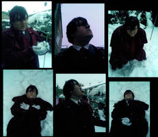 Alucard in the Snow