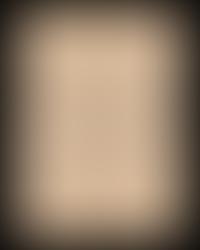 Secret Archives - Solena's journal page