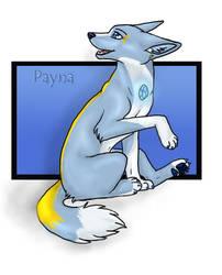 Payna trade by Loske