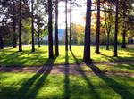 Hakali Park by Petritap