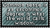 Common Sense by QuidxProxQuo