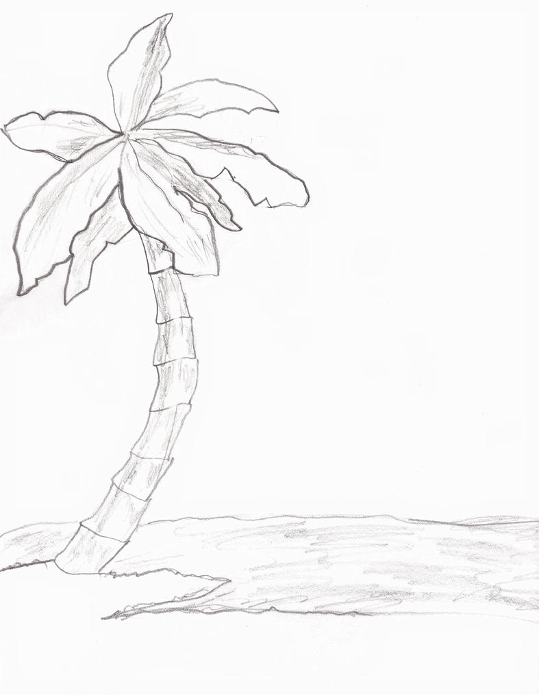 how to draw a palm tree for beginners