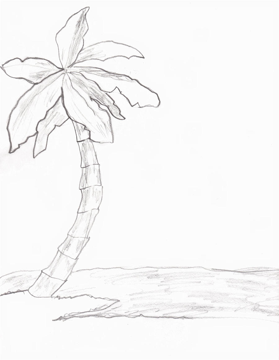 how to draw sunset palm trees