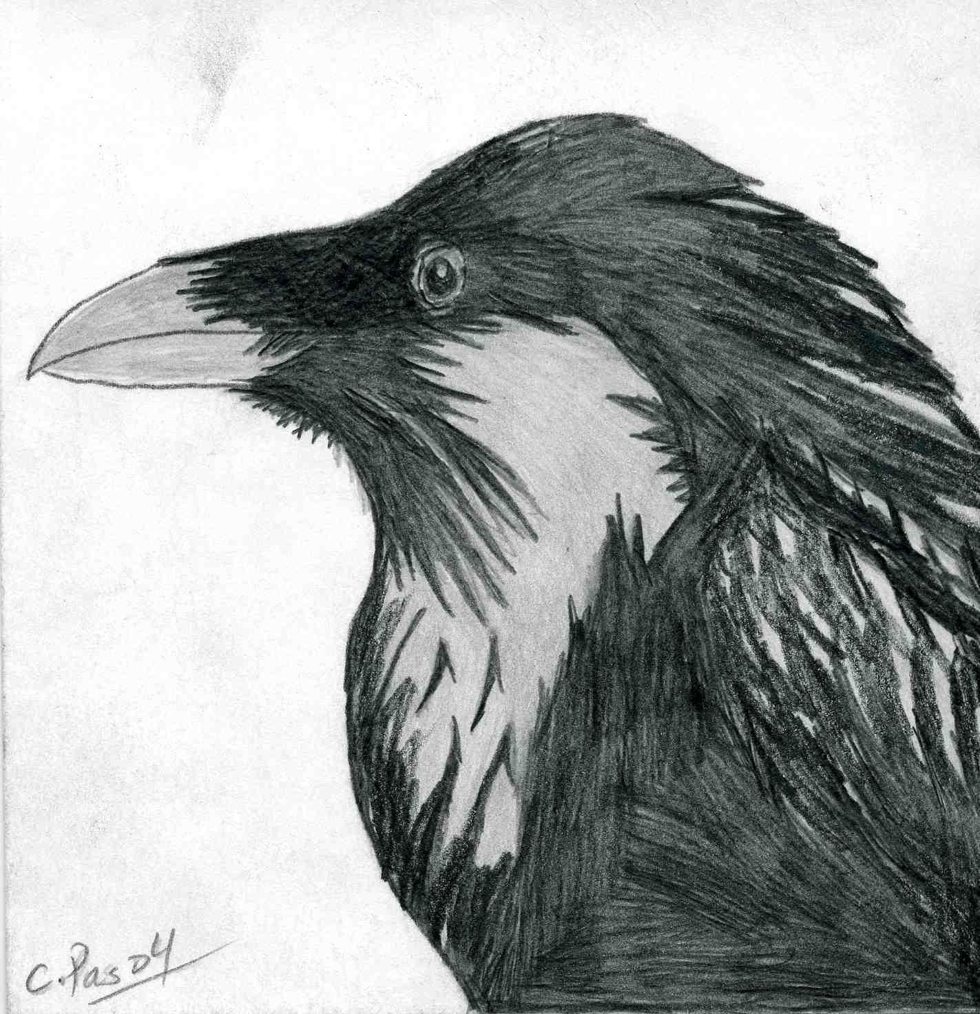 Raven 1 by xacuchina