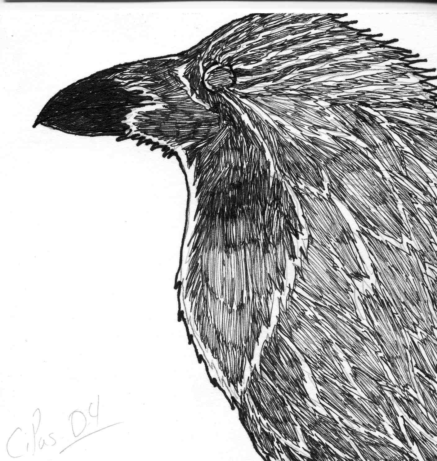 Raven 4 by xacuchina