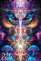 Peekaboo by psilotericvisions