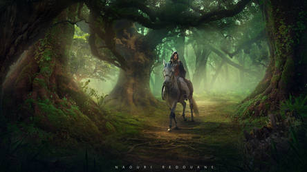 Fantasy Middle Forest