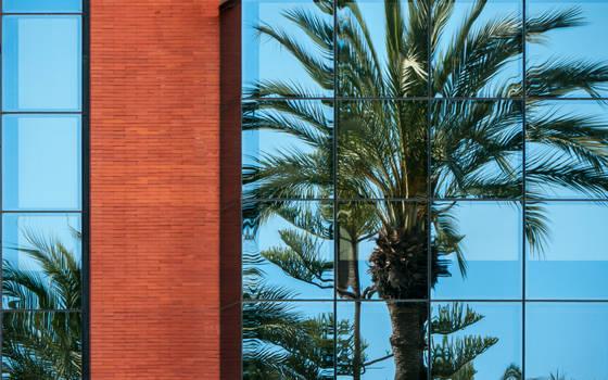 Window Puzzle? (2010)