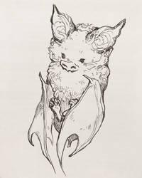 Wee babby bat by gawki