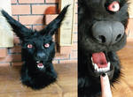 Black wolf up close  :SOLD: