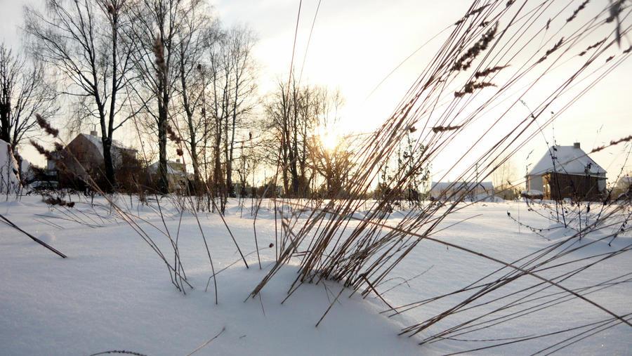 Winter noon ... by Alchemija