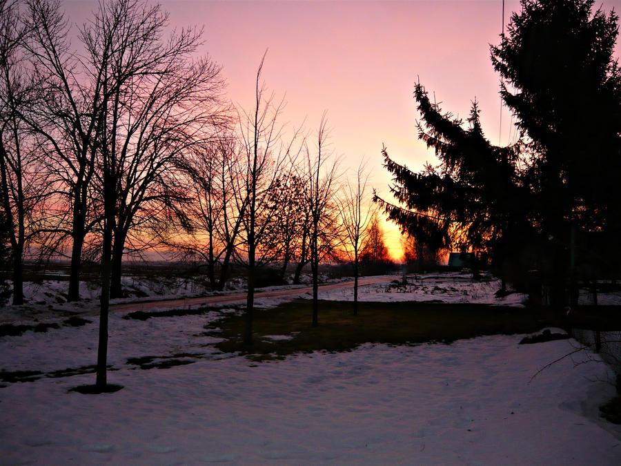 Sunrise by Alchemija