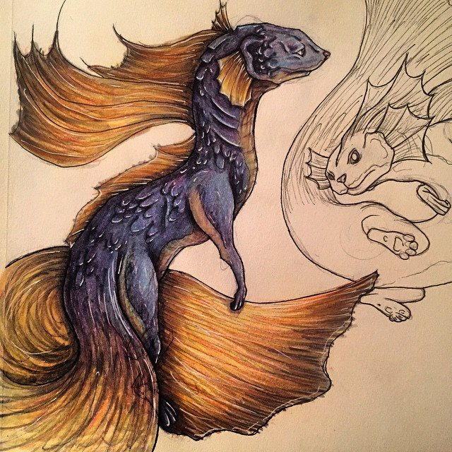 Beta Fish Mix by shroomstone