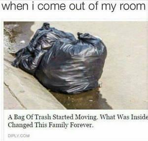 Bag o memes