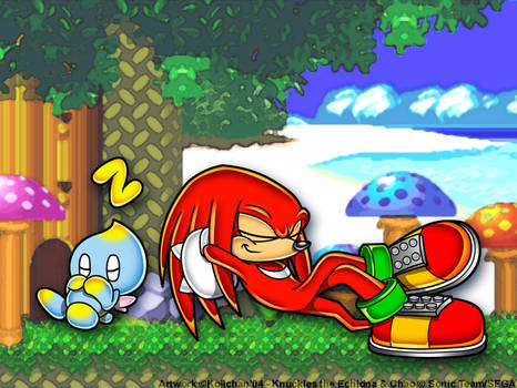 +-+ Knuckles and Chao 'Laxin