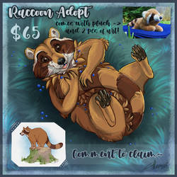 Reduced Price! Raccoon Adopt [OPEN]