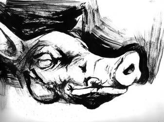 cabeza de cerdo by AMEZCUA