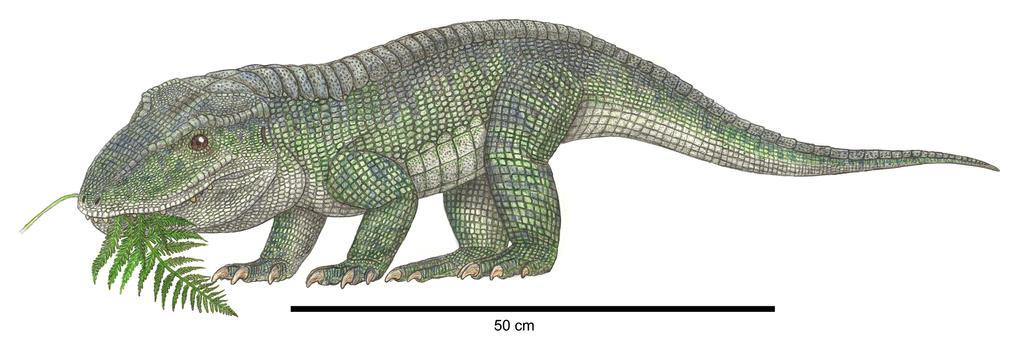 Revueltosaurus by Typothorax