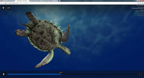 Rare Sea Turtle 2 by Vhalldezz