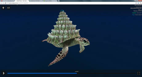 Rare Sea Turtle 3 by Vhalldezz