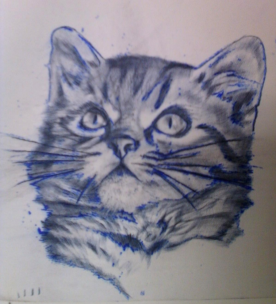 Kitty cat tattoo practice skin by lauraxavier on deviantart for Practice skin for tattooing