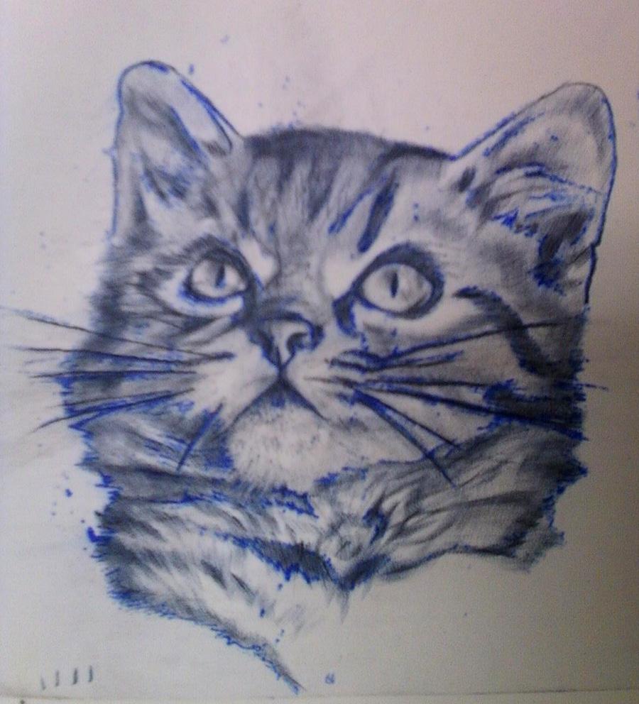 kitty cat tattoo practice skin by lauraxavier on deviantart. Black Bedroom Furniture Sets. Home Design Ideas