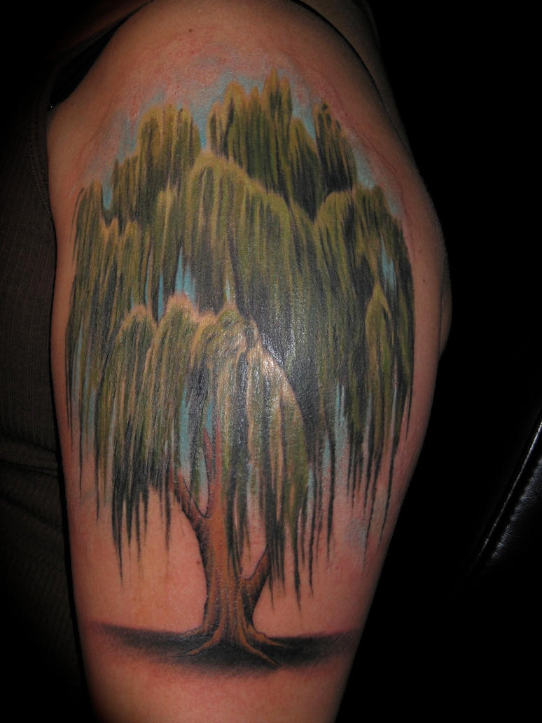 willow tree by bobeck on deviantart ForWillow Tree Tattoo