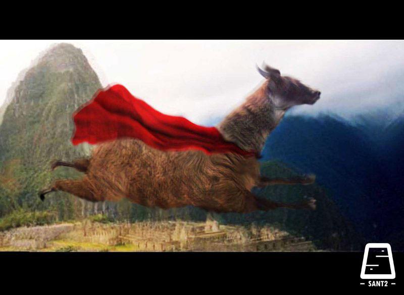 Super Llama HD