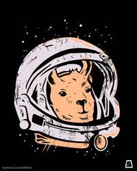 Astrollama - Llama in space