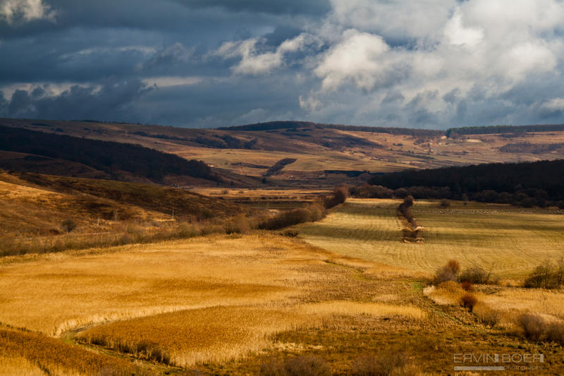 Golden Fields of Autumn by ervin21