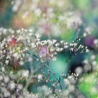 fairy garden by Orwald