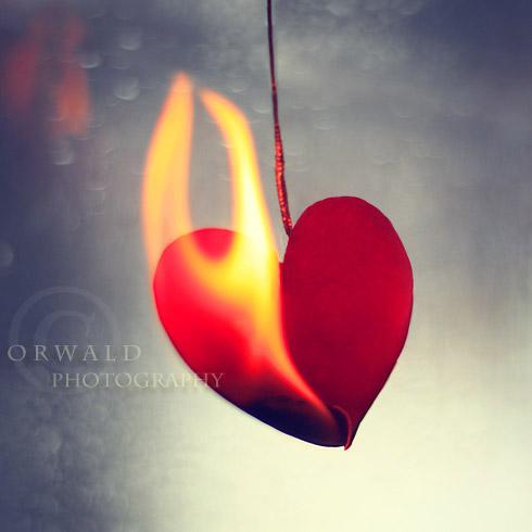 burn it! by Orwald