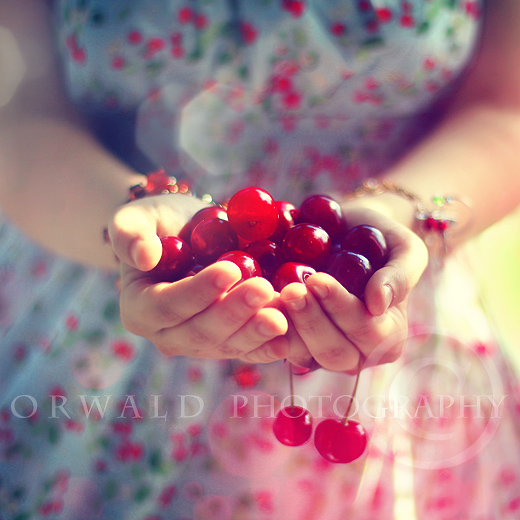 taste of summer by Orwald
