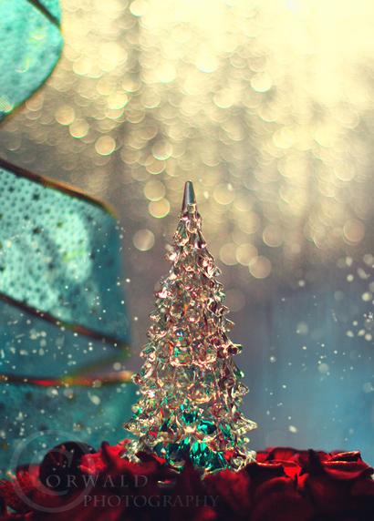 magic winter by Orwald