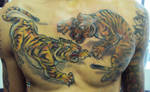 tigers by renatothally