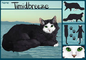 Timidbreeze by TimidCute