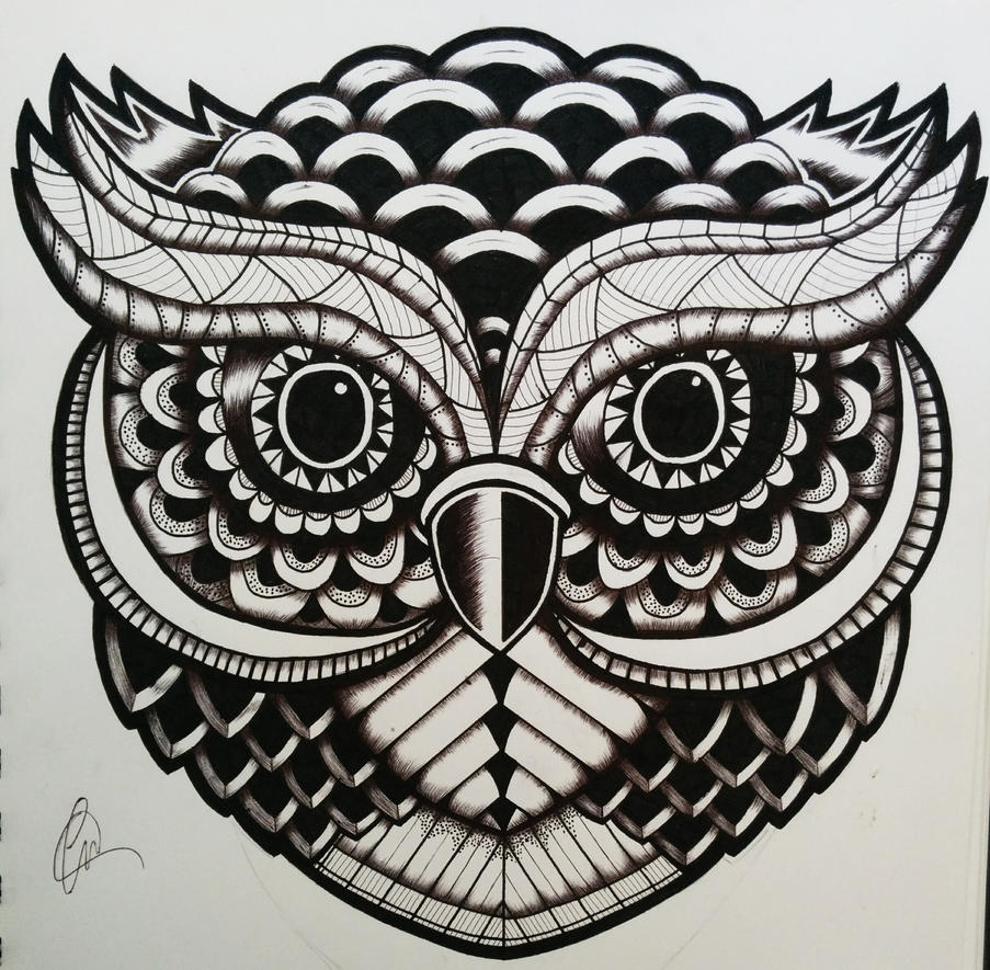 Zentangle Owl By Lukemac On Deviantart