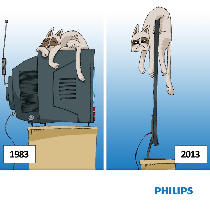 Philips grumpy cat