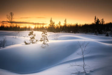 Shapes in the snow by streamweb